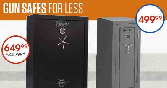 Gun Safes for less